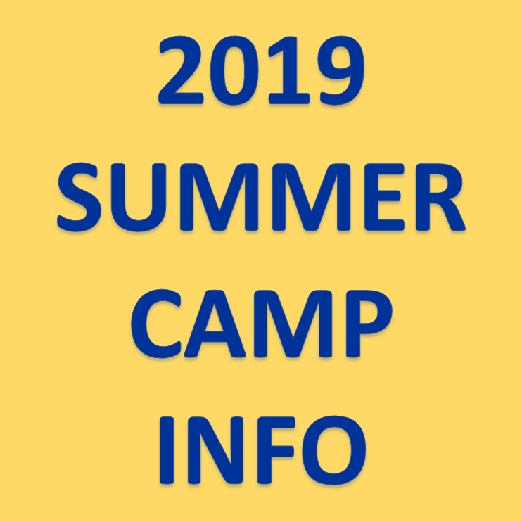 Summer Camp Logo Image